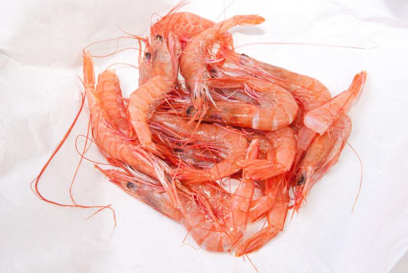 Deep-water Pink Shrimp